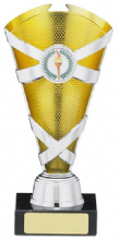 Multi Sport Criss Cross Trophy